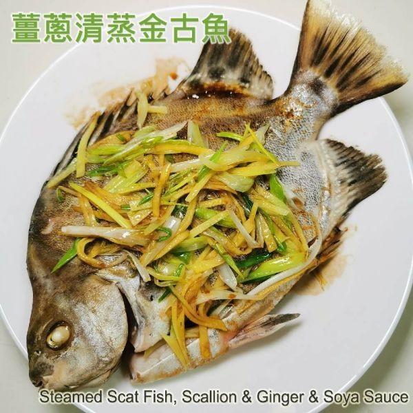 薑蔥清蒸金古魚