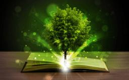 magicbook.png